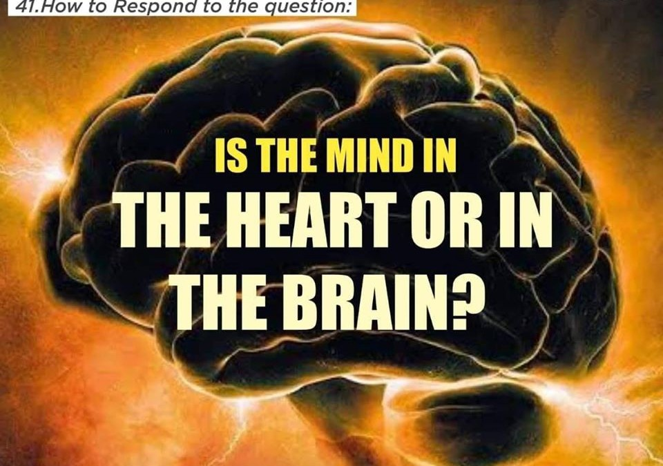 IS THE MIND IN THE HEART OR IN THE BRAIN?