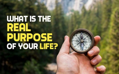 What's the real purpose of your life?
