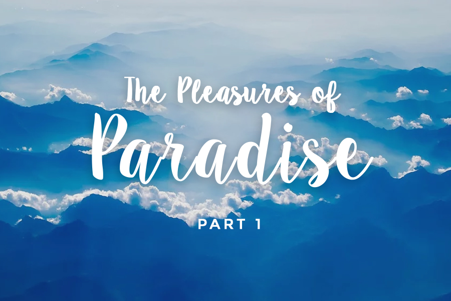 The Pleasures of Paradise (part 1 of 2)
