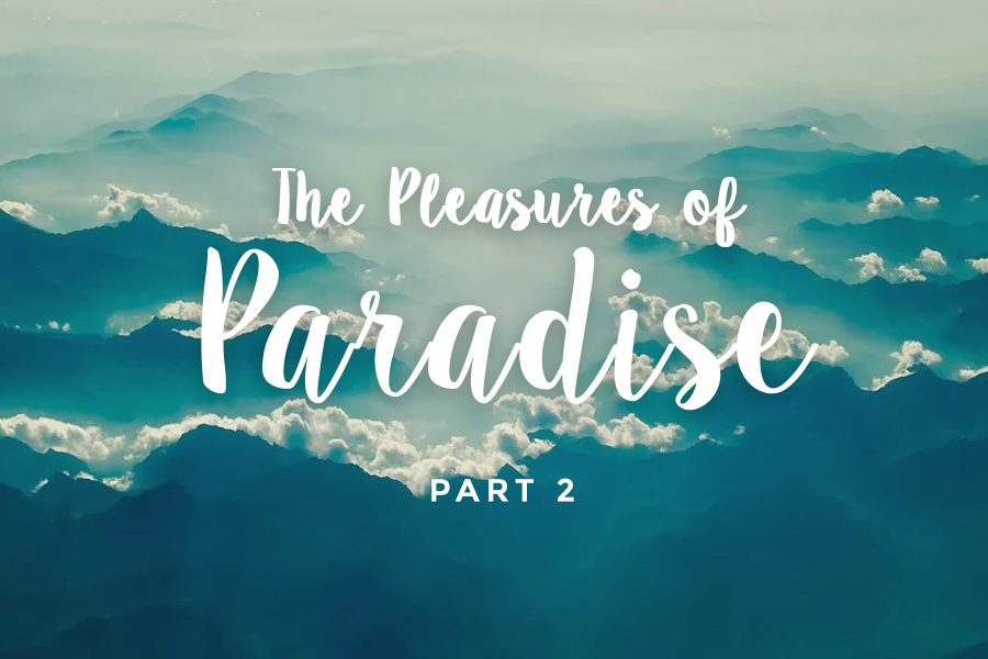 The Pleasures of Paradise (part 2 of 2)